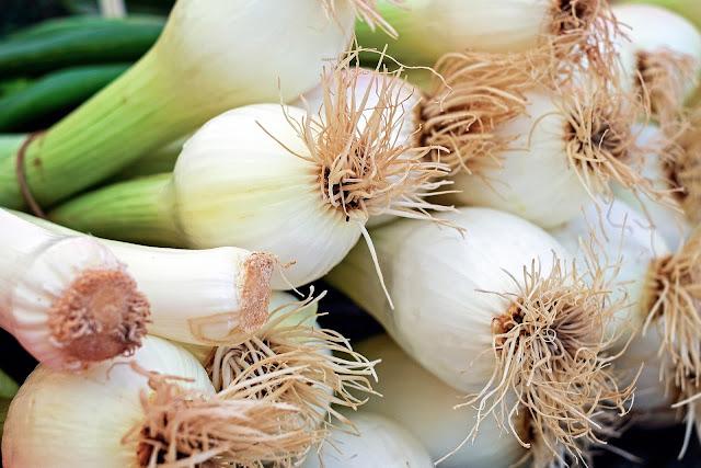 يوصي الخبراء باستخدام البصل الأخضر