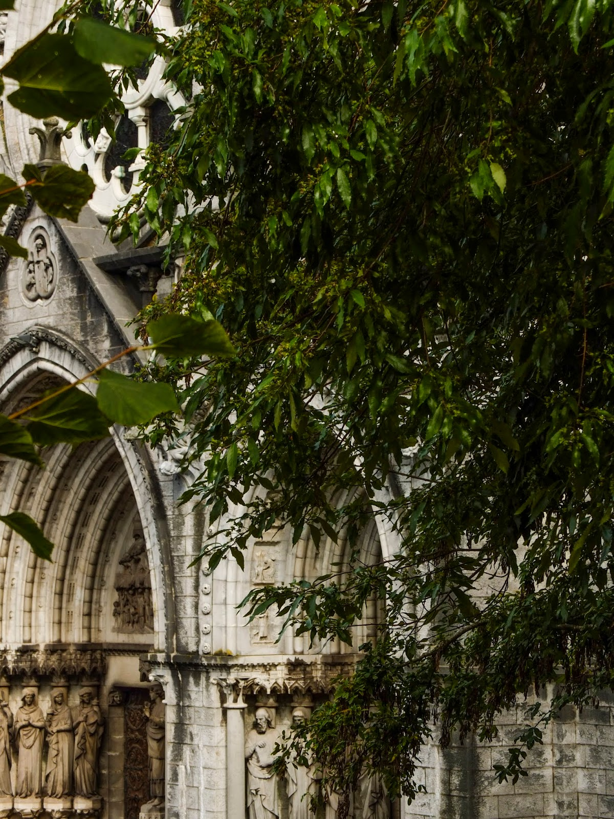 The entrance to Saint Fin Barre's Cathedral behind some tree branches.