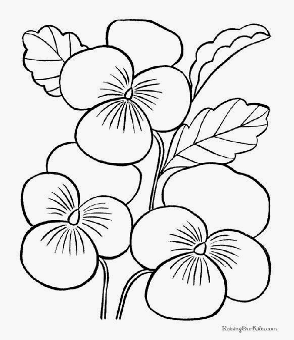 Flowers Coloring Pages Rainforest Coloring Coloring Pages
