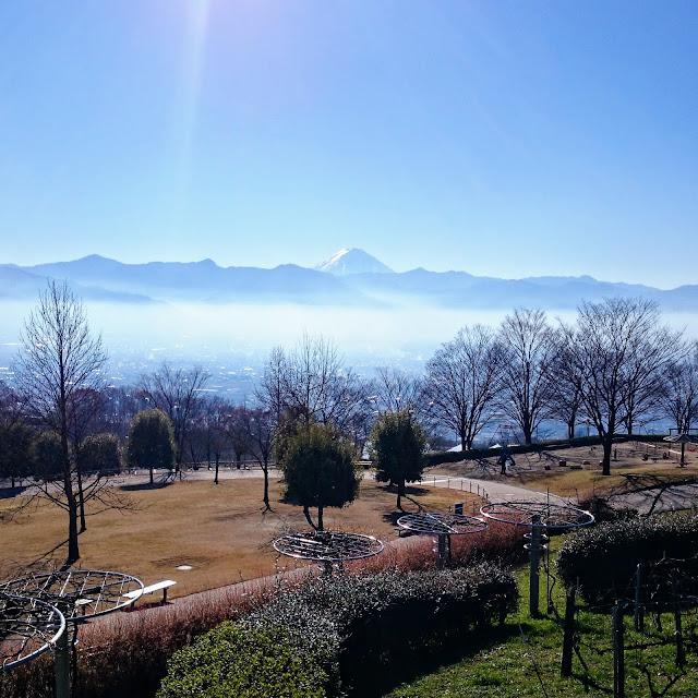 笛吹川フルーツ公園 富士山