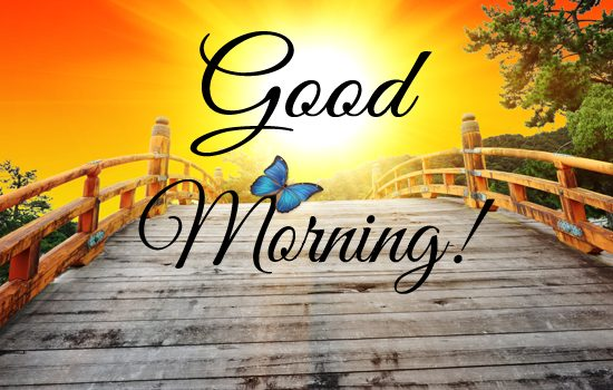 Good morning greetings ewhat what to know anything make money good morning most beautiful good morning hd wallpapers good morning hd photos good morning widescreen images good morning pictures free download good m4hsunfo