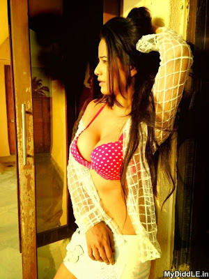 2014 Latest New Hot Images of Poonam Pandey in Bra showing Cleavage