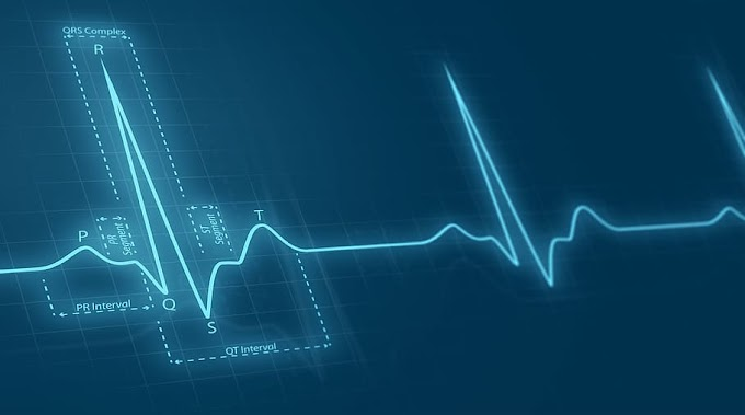 Healthcare Automation Market Survey - Rising Trend of Automating Activities in Healthcare