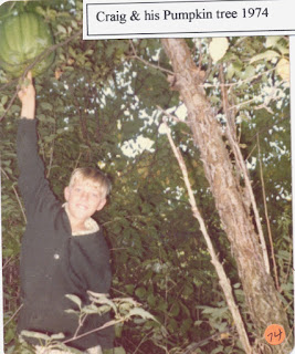 Craig Dahlin and his pumpkin growing in a tree