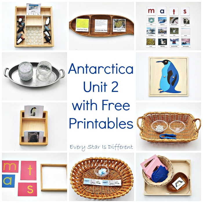 Antarctica Unit 2 with Free Printables