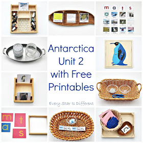 Montsesori-inspired Antarctica learning activities and free printables for kids.