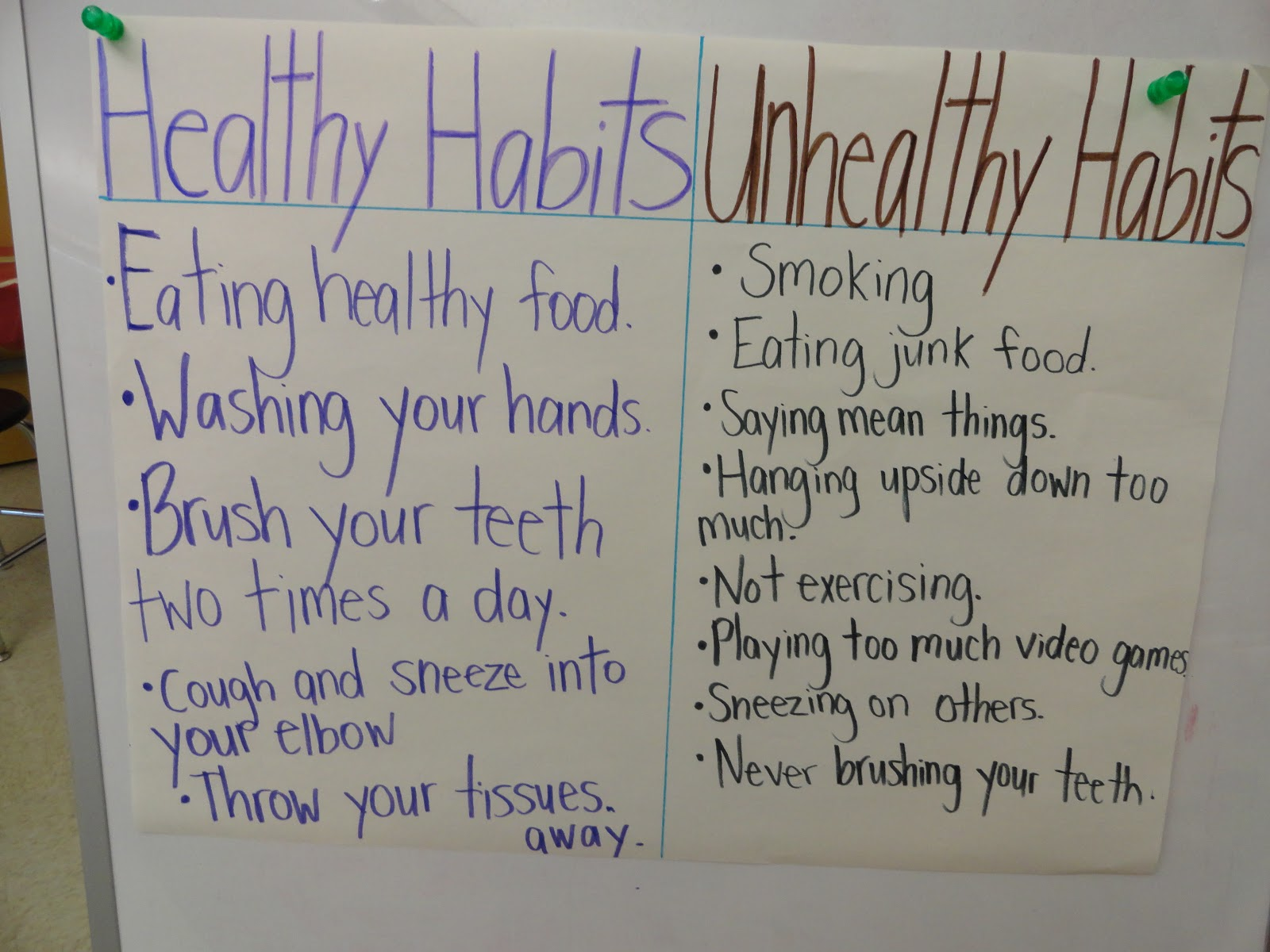 My Student Teaching Experience Healthy Habits