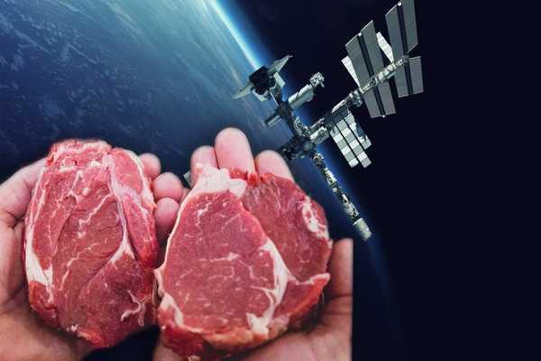 رواد فضاء يزرعون اللحوم بنجاح في الفضاء لأول مرة باستخدام تقنية حيوية