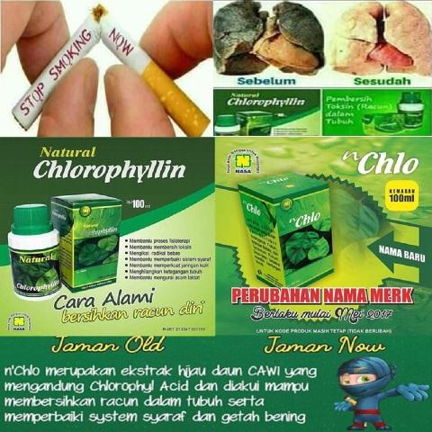 natural cholophylin