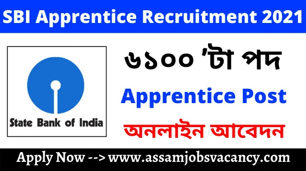 SBI Apprentice Recruitment 2021 ~ 6100 Vacancy Available