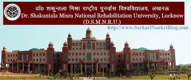 Sarkari Naukri Vacancy DSMNRU Lucknow