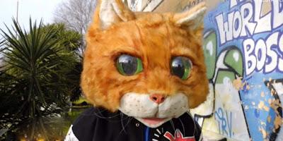 indizi gatto cantante mascherato