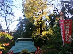 佐助稲荷神社紅葉