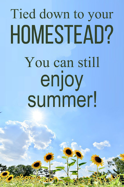 Tied down to your gardens and livestock? You can still enjoy summer! Here are some inspiring ideas!