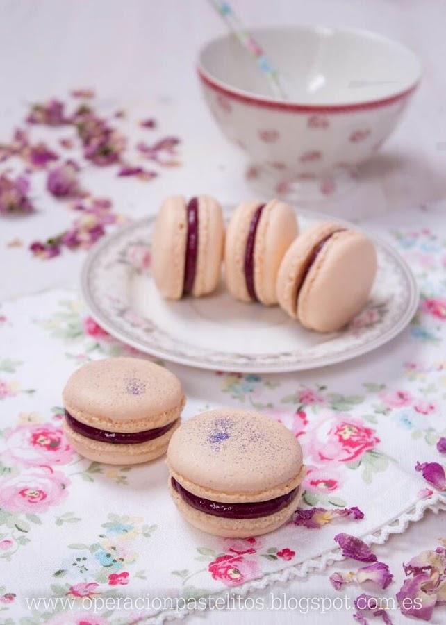 macarons-paso-a-paso
