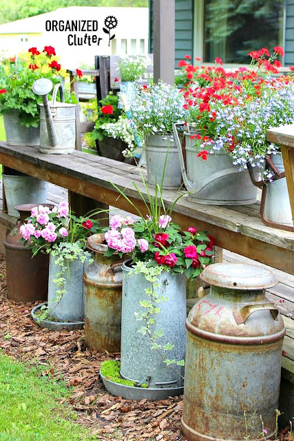 Decorating the Yard & Garden with Vintage Milk Cans #vintage #farmtools #milkcan #creamcan #junkgarden #outdoordecorating