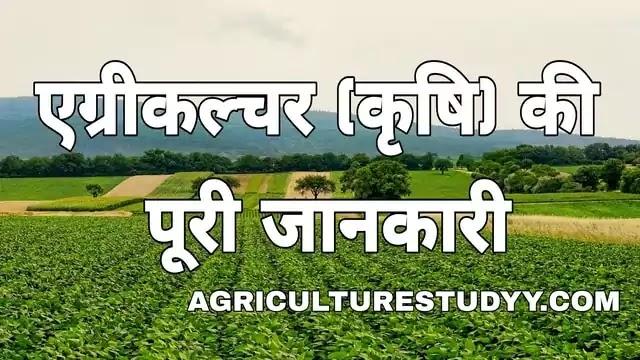कृषि (krishi) क्या है अर्थ एवं परिभाषा, agriculture in hindi, एग्रीकल्चर इन हिंदी, krishi in hindi, कृषि के प्रकार, कृषि के लाभ, भारत मे कृषि का महत्व - Agriculture Ki Puri Jankari Hindi Mein
