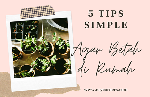 5 Tips Simple Agar Betah di Rumah