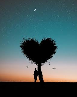 love shayari,sad shayari,hindi shayari,urdu shayari,love shayari status,romantic shayari, love shayari, heart touching shayari, status, shayari on true love,one sided love shayari, tik tok sad shayari,love shayari pics for whatsapp
