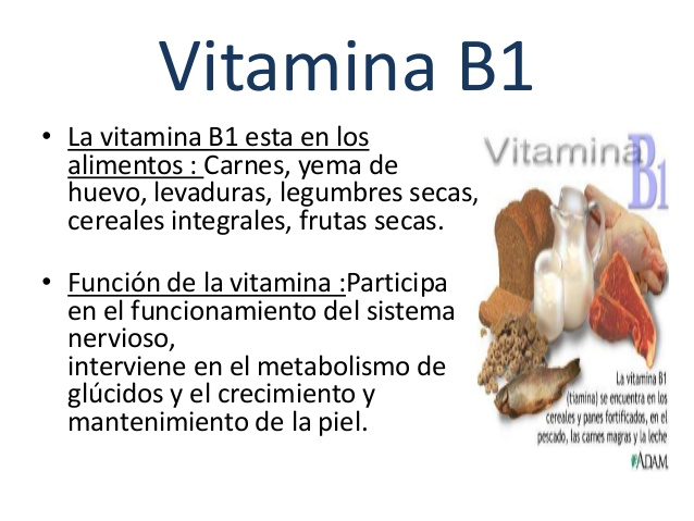 Cemuvenezuela vitaminas hidrosolubles - Alimentos ricos en b1 ...