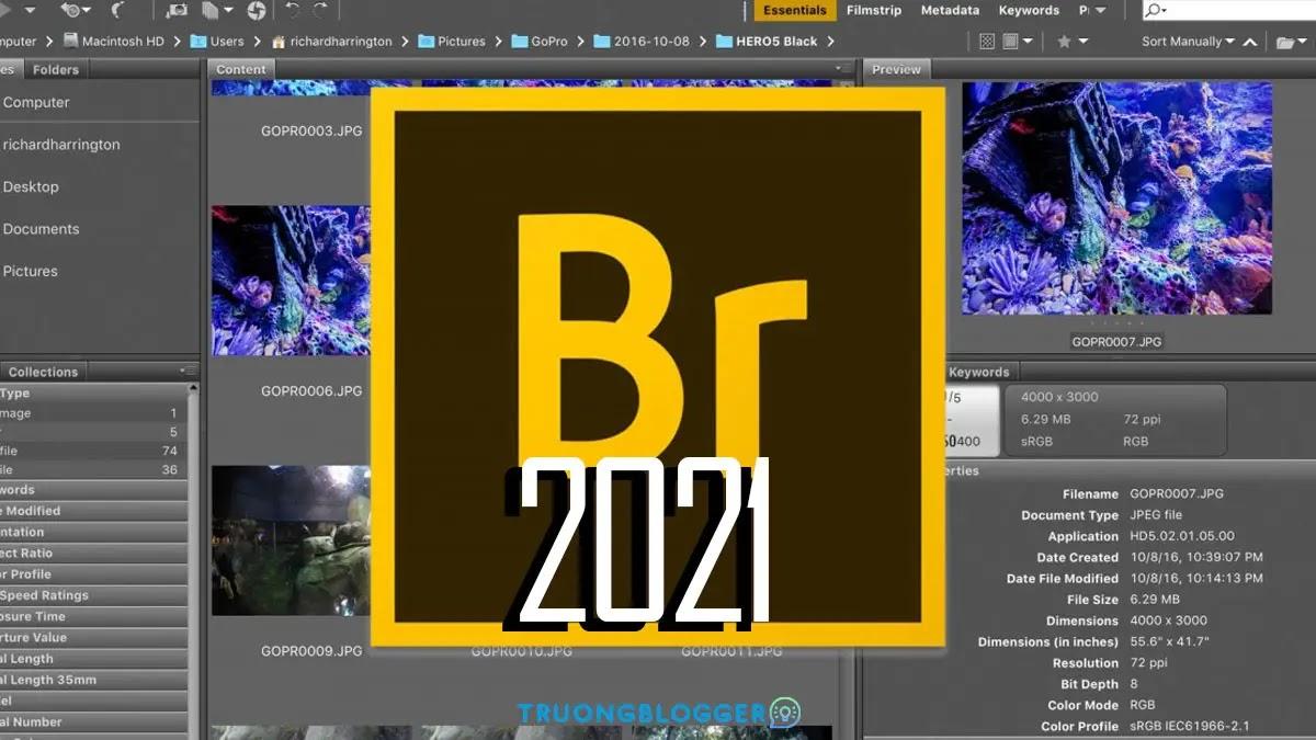 Tải về Adobe Bridge CC 2021 - Hướng dẫn cài đặt chi tiết