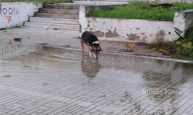 """Στυλίδα: Το θέατρο """"Μαρία Κάλλας"""" μετά τη βροχή! (Φώτο & βίντεο)"""