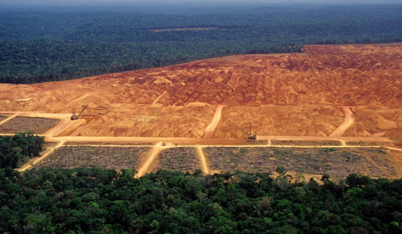 Amazonía brasileña perdió unos 8,500 kilómetros cuadrados de selva en el 2020
