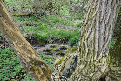 Nine-hole Stone, Irish Bullaun Stone.