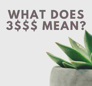 What does 3$$$ mean ? - Calculative Mind