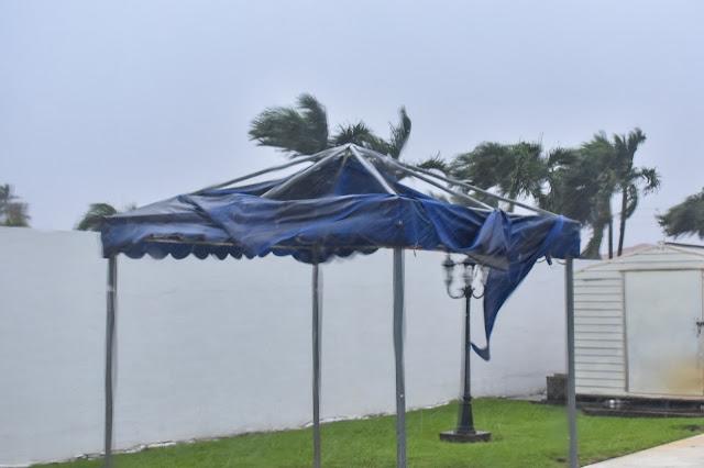 Damaging Hurricane Winds