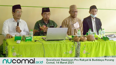 MWCNU 05 Comal Rancang Kemandirian Ekonomi Lewat Budidaya Porang dan Swalayan Pro Rakyat