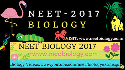 NEET Biology 2017 Questions with Answers