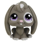 Littlest Pet Shop Pet Pairs Rabbit (#982) Pet