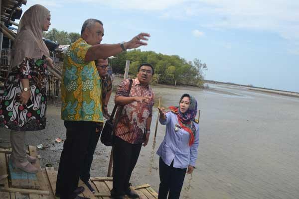 pesisir cirebon bakal jadi kawasan wisata baru