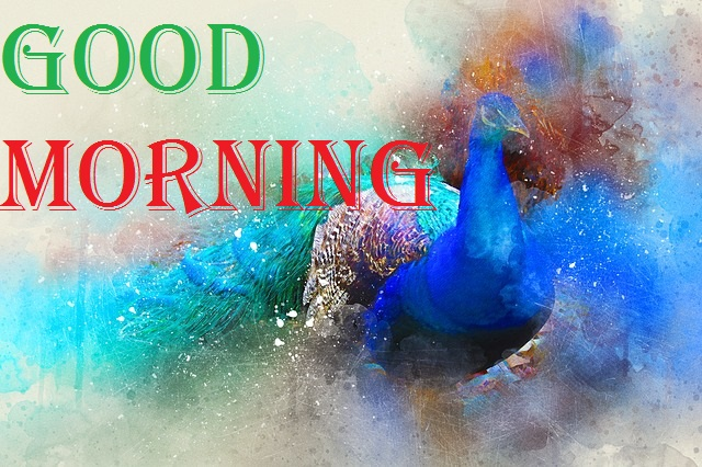 good morning message with peacock painting image