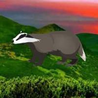 WowEscape-Badger Mountain Escape