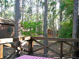deck view from the ft. wilderness cabin in orlando florida