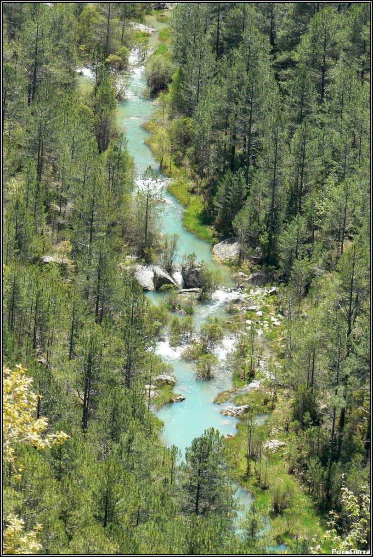 El Río Cuervo antes de llegar a Solán De Cabras