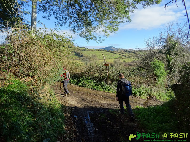 Camino de tierra en Camín de Careses