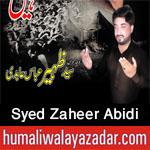 http://www.humaliwalayazadar.com/2016/09/syed-zaheer-abidi-nohay-2017.html