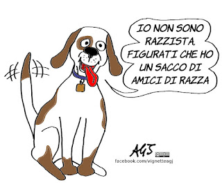 razza italiana, prestipino, razze, razzismo, vignetta, satira