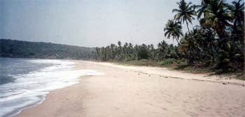 Velneshwar: Rockless Beach