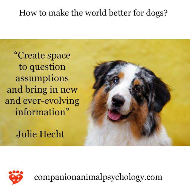 Create space to question assumptions, says Julie Hecht with this happy Australian Shepherd