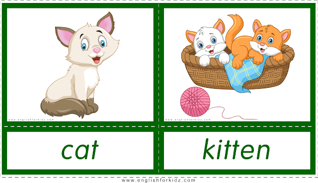 Animals and their babies -- cat - kitten -- printable flashcards