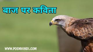 बाज पर कविता  Poem on Eagle Bird In Hindi