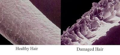 Phục hồi tóc hư tổn bằng Keratin
