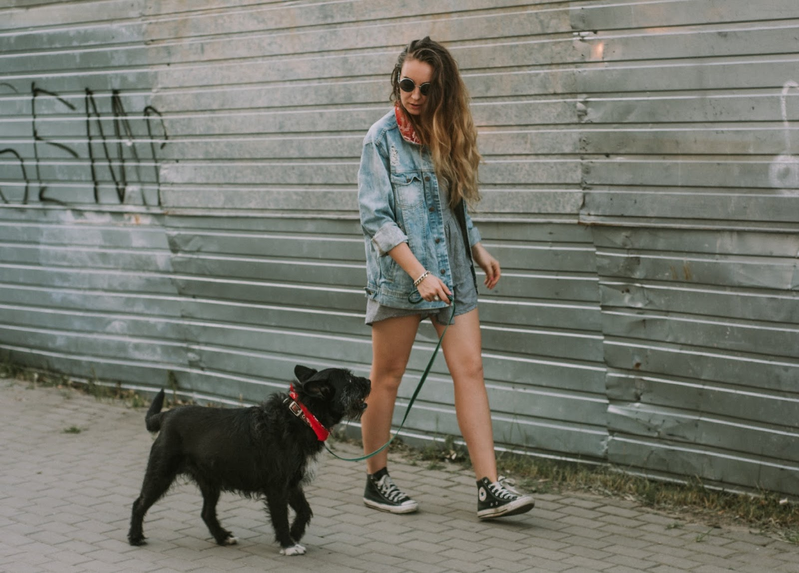 photo sesion with dog