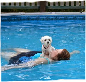 Do not trust! Not all dogs can swim