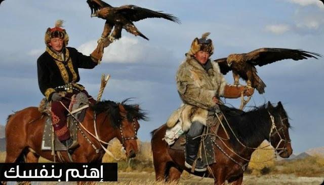 تربية النسور والصقور في منغوليا