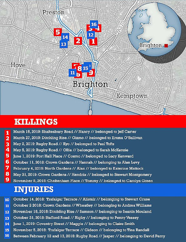 Dail Mail list of killings by the Brighton Cat Killer